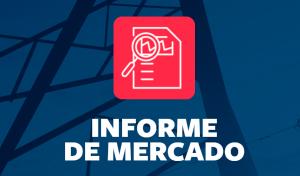 informe mercado eléctrico español