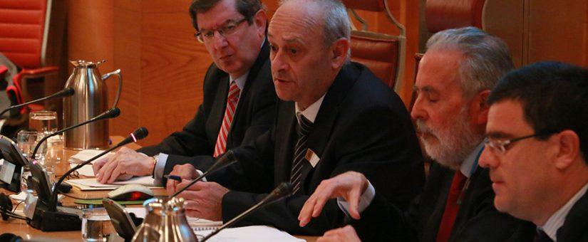 La Plataforma kV25/30 denuncia en el Senado la discriminación tarifaria de 5.000 empresas
