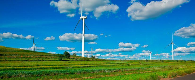 Contratar energía verde… ¿cómo de verde?